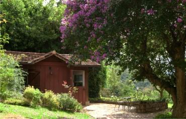 Casa Nogueira